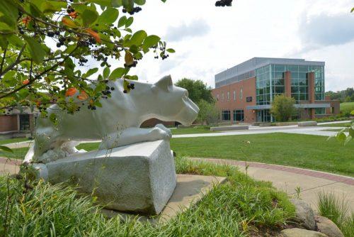 Beaver campus - Lion